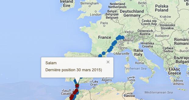 Dernières nouvelles de Salam et Milou en printemps 2015