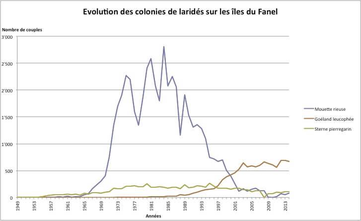 Evolution des laridés au Fanel (1959-2015)