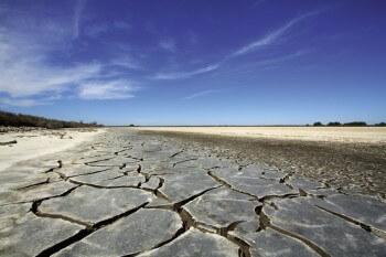Fentes de dessiccation dans les argiles provoquées par la sécheresse.