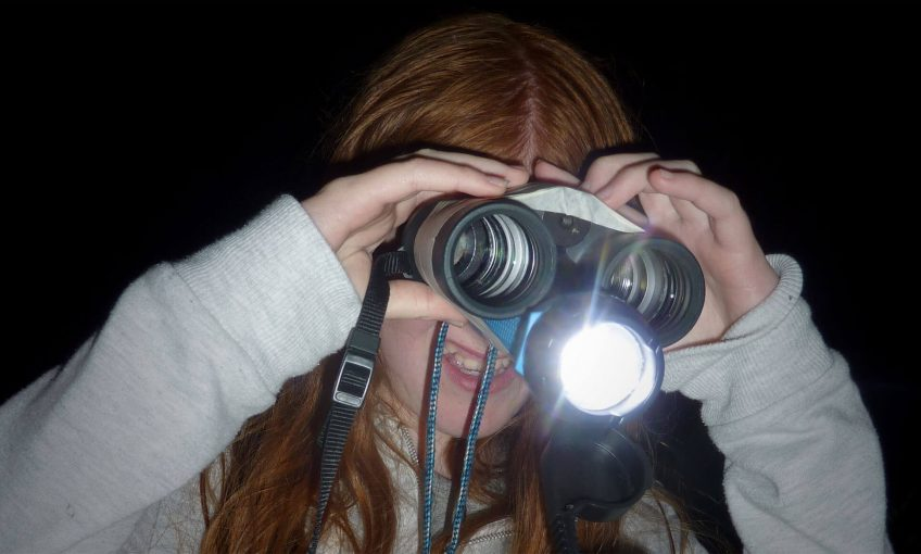 Bricolez vos jumelles pour observer les petits animaux la nuit