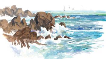 La mer se retire peu à peu et dévoile les rochers de l'estran qui grouillent de vie.