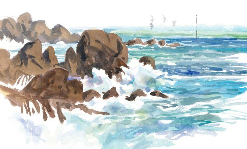 La vie à marée basse