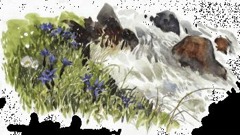 Torrent source du printemps