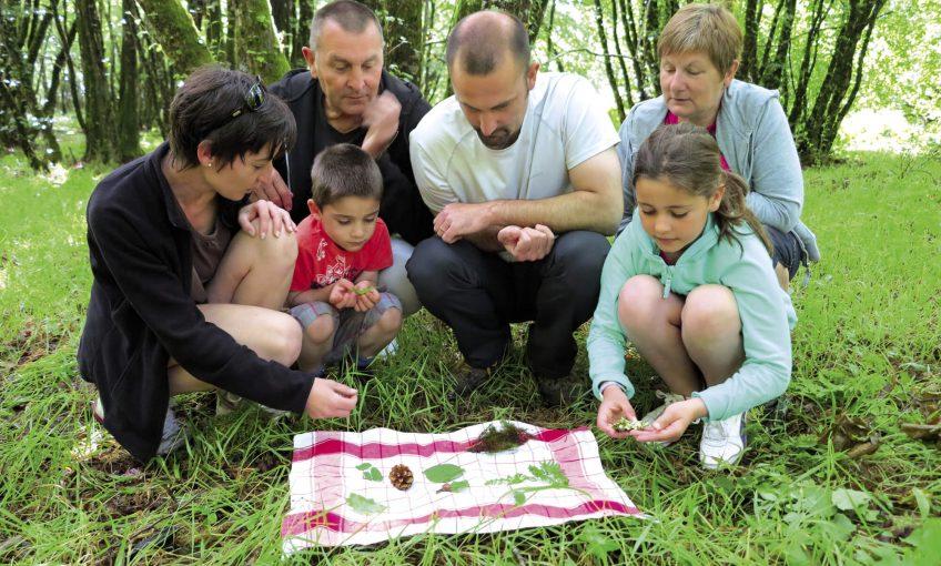 Un memory forestier grandeur nature, un jeu à tester en famille