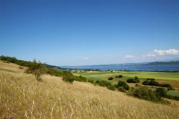 Balcon ensoleillé sur le lac de Neuchâtel, la Chassagne abrite plus de 300 espèces de plantes.