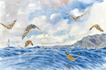 Courageuses belles-dames au-dessus des vagues