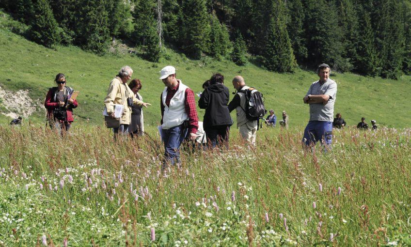 Concours des prairies fleuries dans le haut Jura 2014