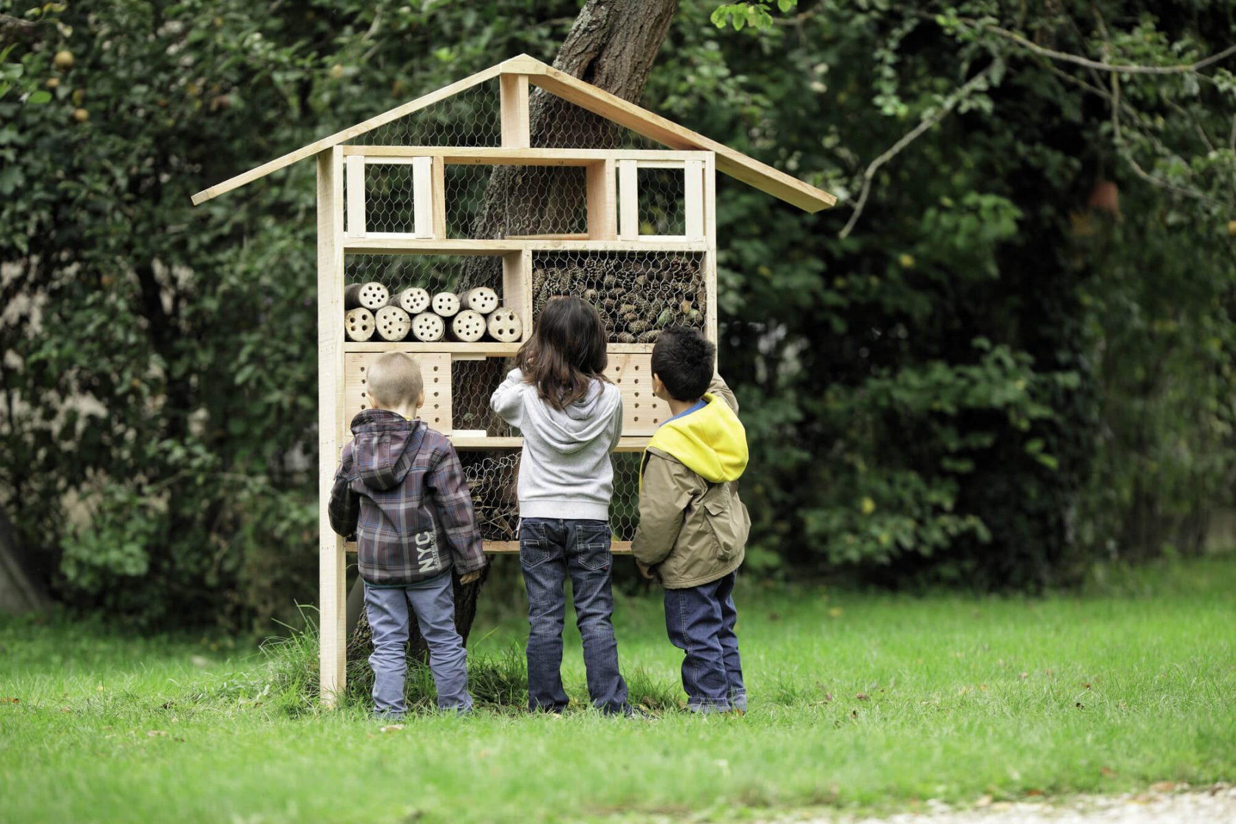 des maisons pour les abeilles la salamandre. Black Bedroom Furniture Sets. Home Design Ideas