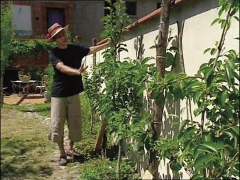Jardinez avec le soleil