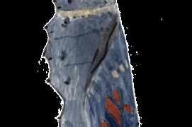Juste avant l'éclosion, l'abdomen de la nymphe s'allonge. On devine par transparence les motifs du futur papillon. Une animation 3D de la transformation est visible sur:  goo.gl/LURXOv / © Sylvain Leparoux
