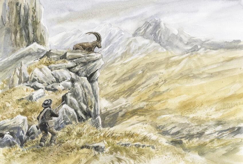 Le bouquetin dans les Alpes en 2000 ans d'histoire