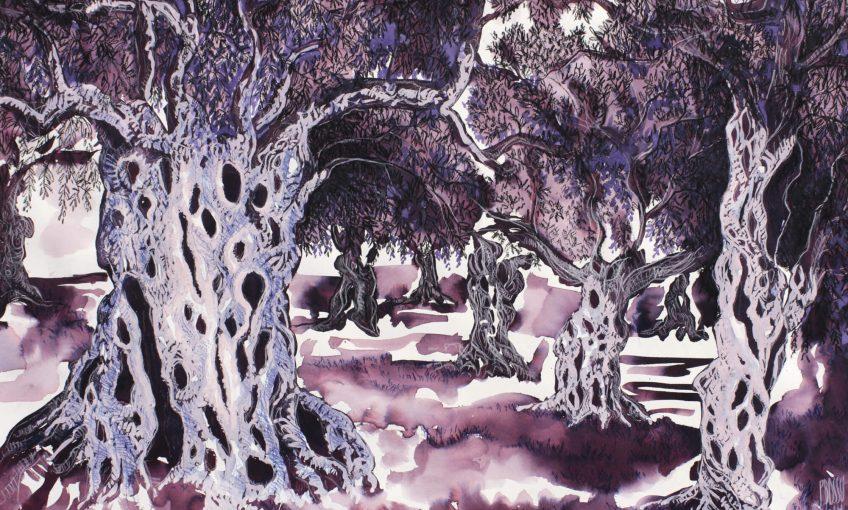 Olivier, arbre de paix et immortel