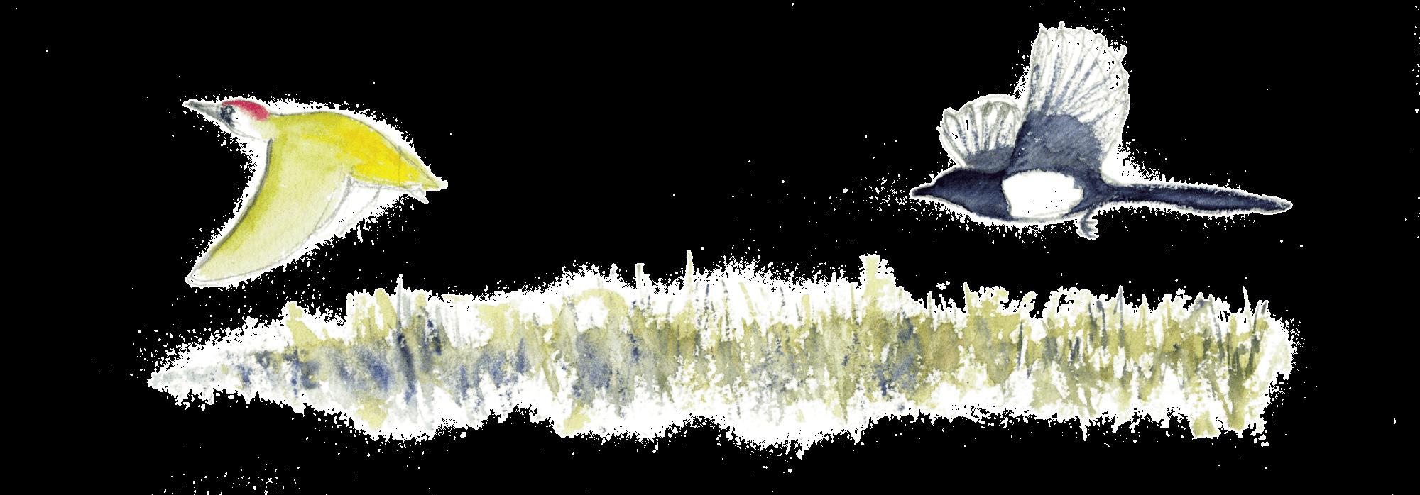 La nature a rendez-vous dans le verger