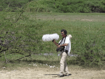 Bioacoustique et sons de la nature