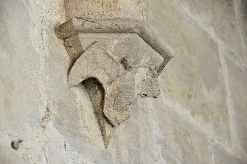Chauves-souris habitantes des vieux murs remplis d'histoire