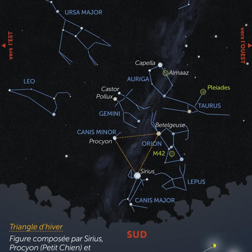 Obsevez l'étoile Sirius dans le ciel