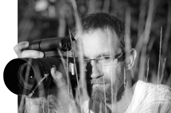 Sébastien Lamadon