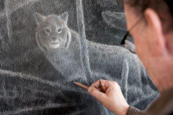 22 février 2007 - « Deux jours de suite, le lynx avait déposé ses poils sur le tas de bois. Alors, je me suis caché derrière une toile d'affût tout près de là. Ce soir, il n'y avait qu'un étroit quartier de lune à travers les nuages. Au moment où j'allais partir, je distingue une forme sur le chemin: le lynx aux yeux noirs cerclés de blanc. La bête de la nuit et du mystère. »