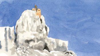 Aigle sur une corniche rocheuse