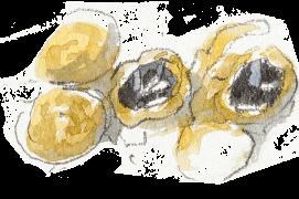 « Cocons avec œufs. » / © Benoît Perrotin