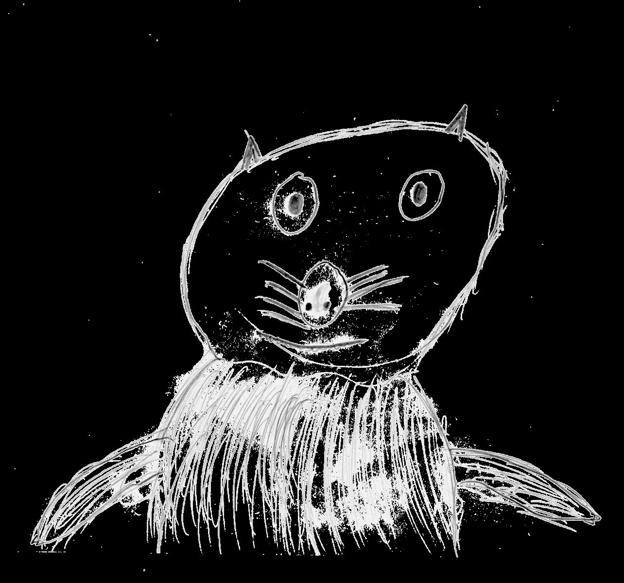 Fabuleux Dessine-moi une loutre - La Salamandre YO82