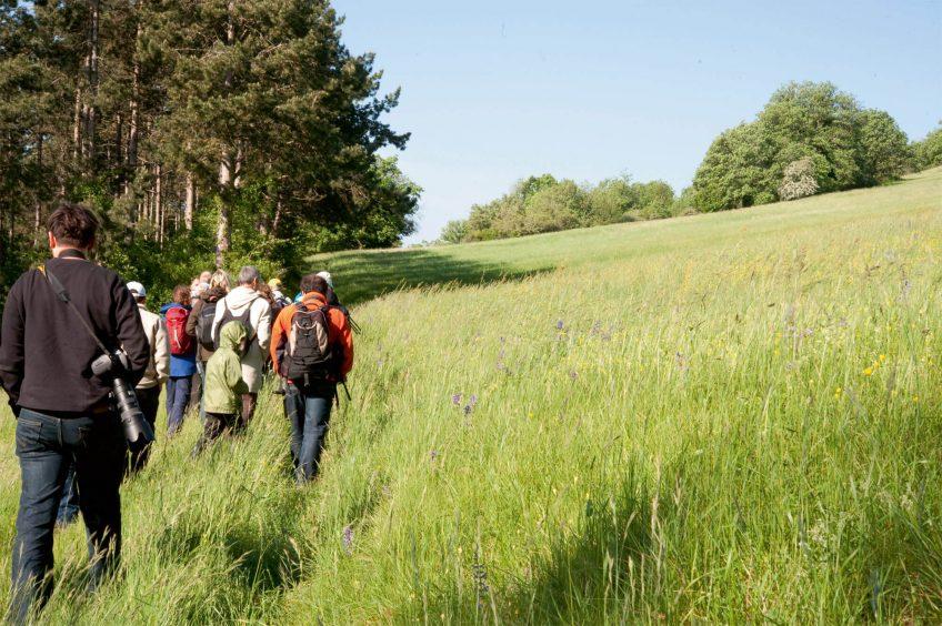 C'est la fête de la nature 2013 en Suisse et en France