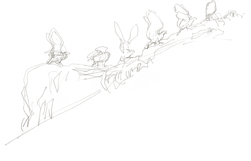 L'envol de l'aigle héritier