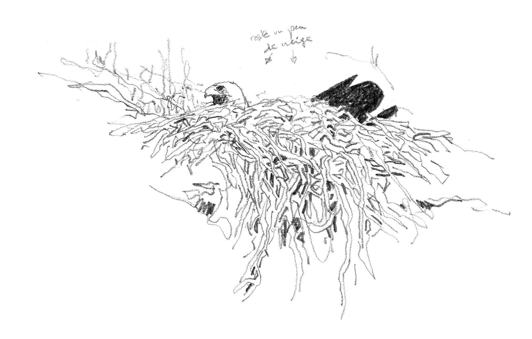 Noces royales sur la corniche des aigles