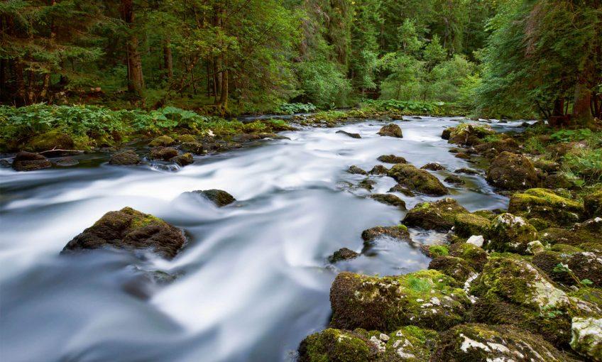 Quand la rivière Orbe déborde au printemps