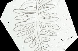Sous les frondes du polypode, des spores regroupés en sporanges attendent le grand voyage par le vent. / © Olivier Loir