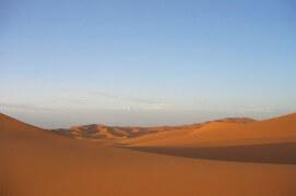 Au début de leur migration, les milans noirs quittent leurs quartiers d'hiver verdoyants pour survoler les dunes de sable du Sahara. / © Jérôme Gremaud