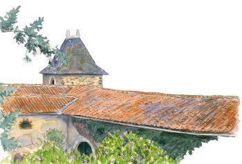 De nombreux oiseaux ont adopté les toits comme lieux de nourrissage et de repos.