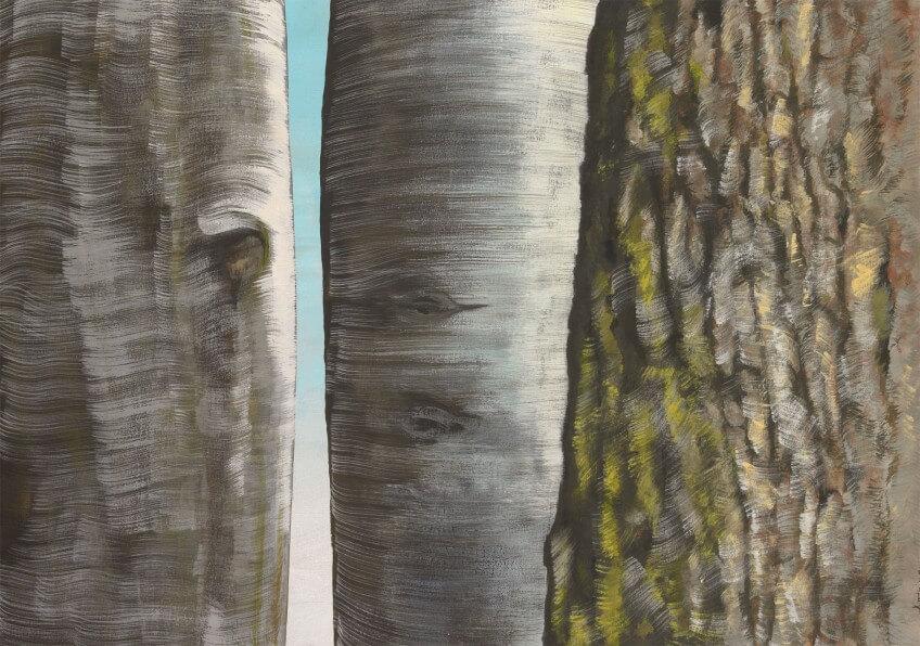 Dessin d'écorces d'arbres