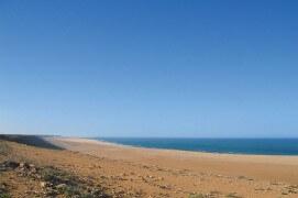 Les milans noirs ont réussi leur traversée du Sahara. Enfin la mer ! Un passage encore plus difficile à franchir. / © Jérôme Gremaud