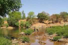 Les points d'eau rassemblent hommes et milans noirs dans le Sahel. / © Jérôme Gremaud