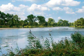 L'estuaire de la Loire est un site de grand intérêt pour les oiseaux et les plantes.