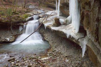 Mouvements fluides ou glace figée, la…
