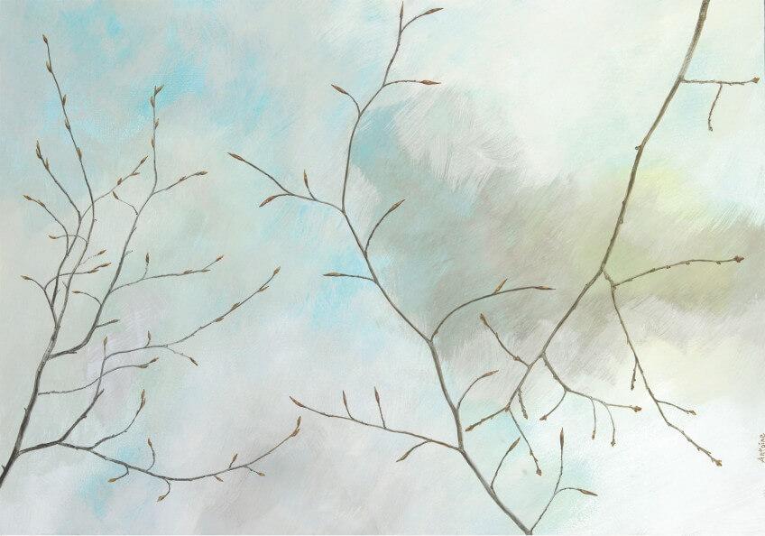 Dessin de rameaux et bourgeons