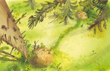 Scoop! Toutes les fourmis ne sont pas des travailleuses infatigables. Certaines ouvrières restent inactives dans le nid et se font nourrir par leurs congénères. Mais elles représentent une équipe de réserve précieuse. En cas de besoin soudain pour réparer le nid après la chute d'une branche, par exemple, elles sont immédiatement embauchées pour prêter main-forte à leurs sœurs.