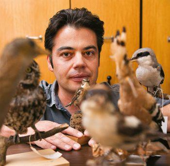 «Le cortège des oiseaux pratiquement disparus de nos campagnes est édifiant. Mais il suffit de peu de chose pour que certaines de ces espèces puissent revenir.» Laurent Vallotton, adjoint scientifique au Muséum d'histoire naturelle de Genève.