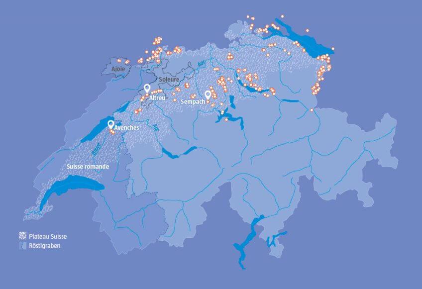 A quand un franc retour de la cigogne en Suisse romande ?