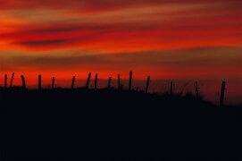 Sur les crêtes du Jura aux premières lueurs du jour. / © Neil Villard