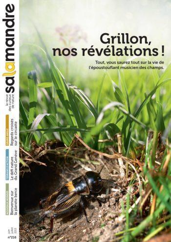 Couverture de La Salamandre n°216