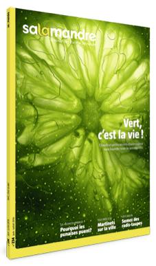 Vert c'est la vie