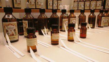 Création de parfums dans la plus…