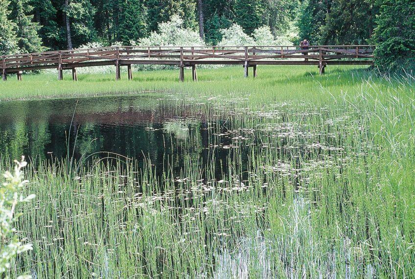 Balade à Saignelégier, au pays des étangs noirs