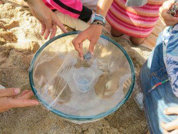 Comment dessaler l'eau de mer facilement en moins d'une heure ?