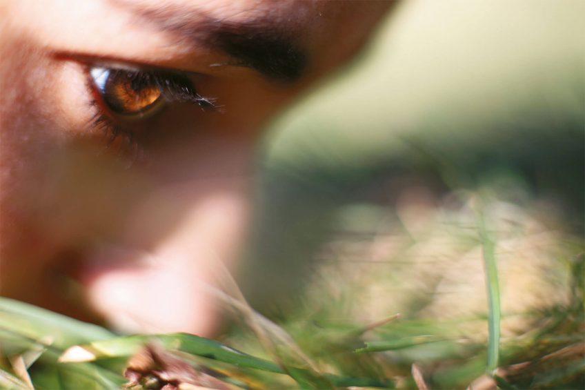 L'école des nez: comment entretenir son odorat