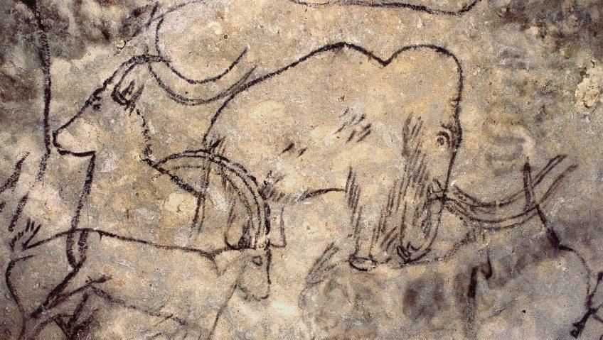 Disparition des mammouths, cause humaine ?