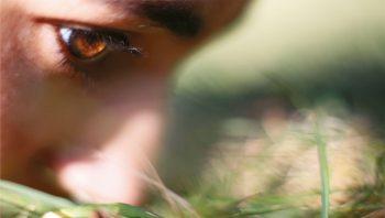 L'odorat est le seul de nos cinq ses relié directement avec le système limbique, siège des émotions et de la mémoire.